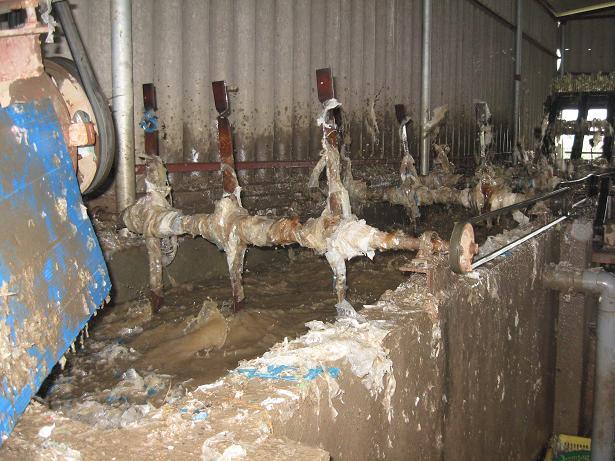Nấu rác thải y tế thành ống hút, túi nilon