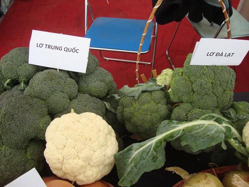 Cách phân biệt 7 loại rau củ quả Trung Quốc và Đà Lạt