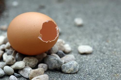 Những điều lưu ý khi ăn trứng
