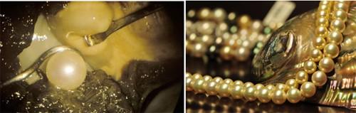 Ngọc trai là loại ngọc quý ở đại dương