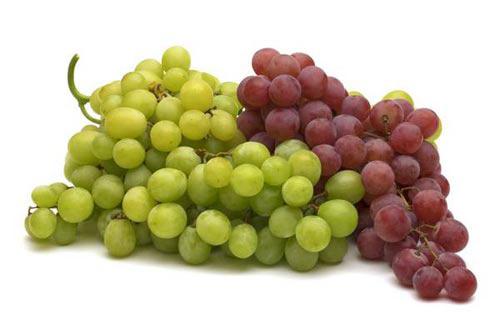 Nên chọn những trái nho có nguồn gốc Ninh Thuận
