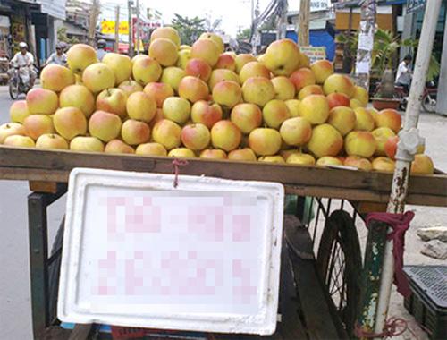 Chọn mua táo mèo Đà Lạt tốt cho sức khỏe