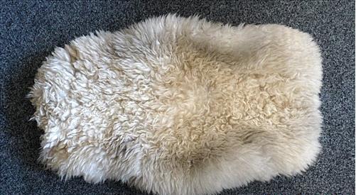 Chăn lông cừu thật ngay cả khi bạn đổ nước vào thì nó vẫn cho hơi ấm