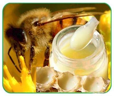Phân biệt sữa ong chúa Thật
