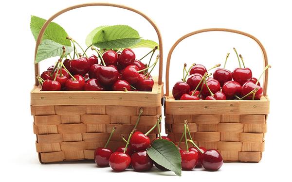 Các nhận biết trái cherry Trung Quốc và cherry Úc