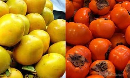 Hồng Trung Quốc có màu đỏ sẫm, bóng mịn . Hồng Đà Lạt có màu vàng cam, không bóng mịn và bắt mắt