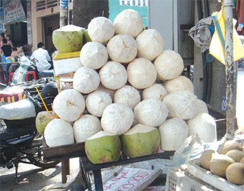 Những quả dừa có vỏ trắng tinh có an toàn tuyệt đối