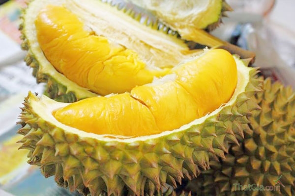 Gai quả sầu riêng ngon là quả có gai nở to đều, ít nhọn, cứng chắc