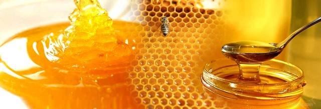 Mẹo nhận biết mật ong rừng