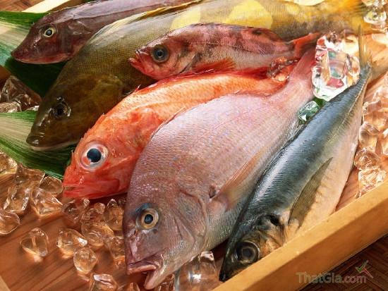 Nhận biết cá tươi sạch và cá ướp hóa chất