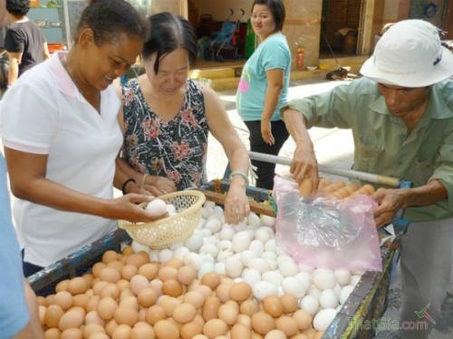 Trứng gà công nghiệp tẩy trắng được bày bán hầu hết ở các chợ
