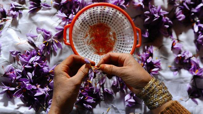 Nhụy hoa nghệ tây - Saffron có thật sự thần thánh không mà chị em nào cũng rủ nhau mua về làm đẹp? - Ảnh 2.